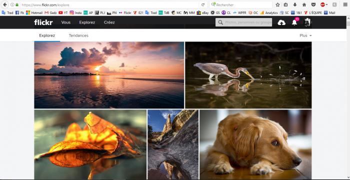 Capture d'écran Flickr - Comment apprendre la photo ?