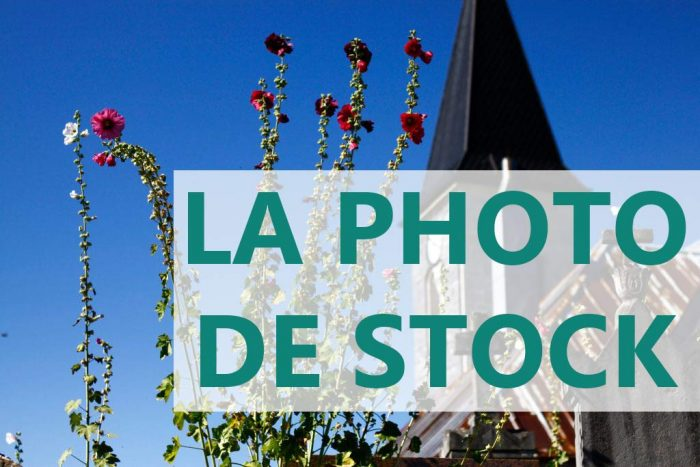 gagner de l'argent photo stock apprenti photographe